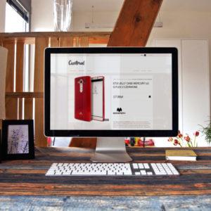 Web design – CaseTrend